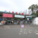 上野動物園のパンダの赤ちゃんは見れる?営業時間は?アクセス方法は?