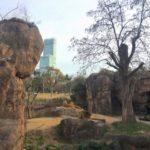 多摩動物公園と上野動物園どちらがおすすめ?動物数や休日の混雑を比較!