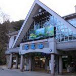 高尾山はケーブルカーとリフトどっちがおすすめ?料金と山頂までの距離を比較!